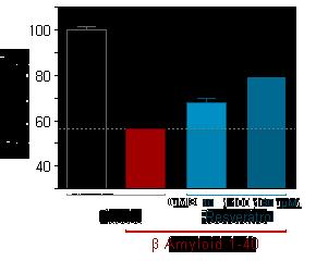 b-amyloid